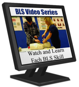 bls-videoseries